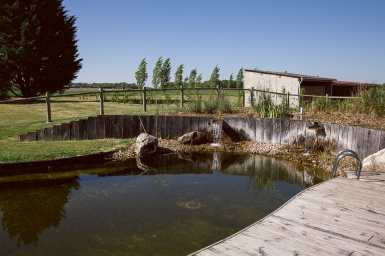 étang de l'armandière bossée